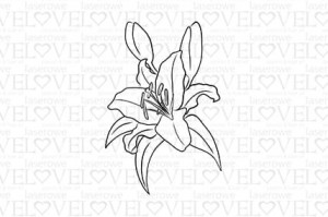 Rubber stamp - Lily- Lily Flower