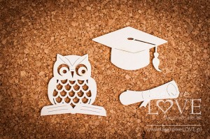Chipboard - Wise owl Back to school